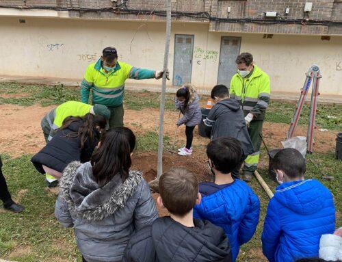 La SAG invita a los escolares a plantar árboles en la plaza Echegaray